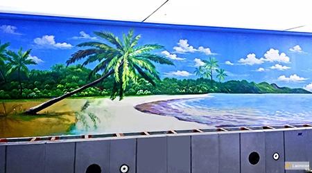 Beach & Tropical & swimming 7