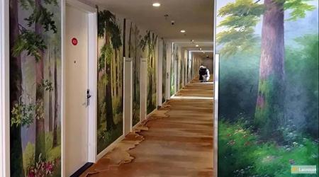 forest landscapes 4