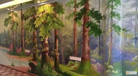 forest landscapes 5
