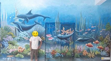 sea life dolphin