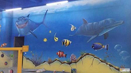 sea life shark